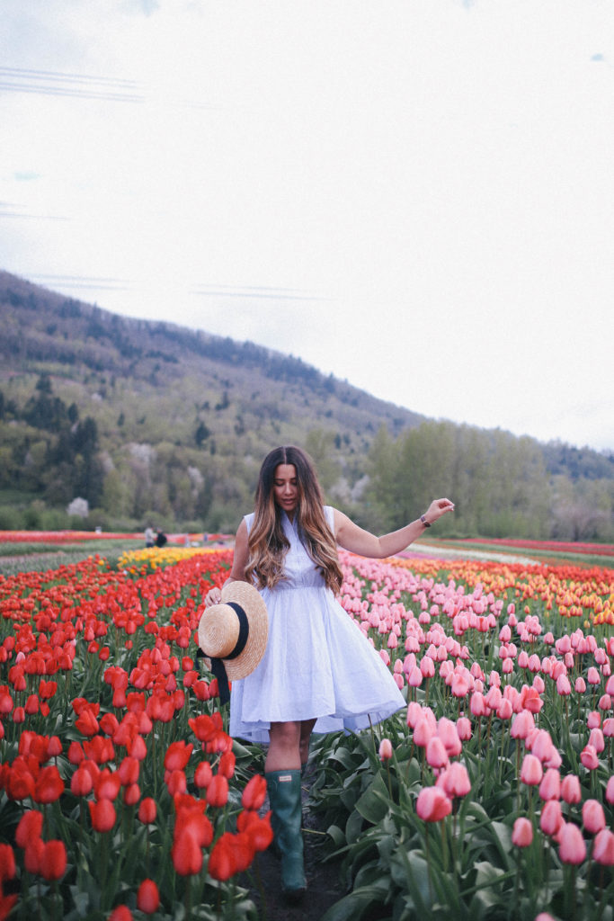 abbotsford tulip festival, what to do in abbotsford bc, alicia fashionista, canadian lifestyle blogger, vancouver fashion blog